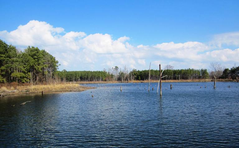 Texas bass fishing fishing texas bass private locations for Fishing lakes in texas